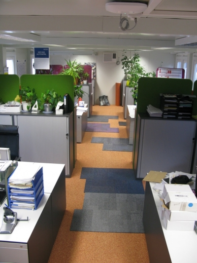 Office adaptation Open Space, Geb. 082, Boehringer Ingelheim Austria